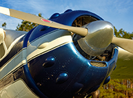 Plantation Air Tour in the Cessna 195